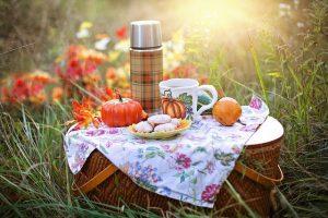 picnic basket - enjoy springtime in Garland TX