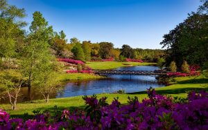 A park with lot of flowers and greenery, a bridge over the river, in one of 80 parks you can visit after moving from Fort Worth to Irving.